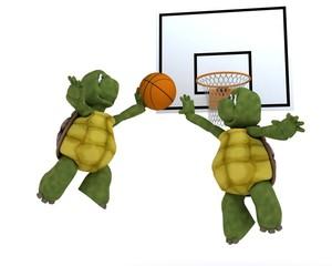 tortoises playing basket ball