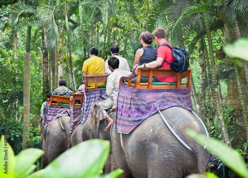 BAKAS ELEPHANT SAFARI, Bali, Indonesia