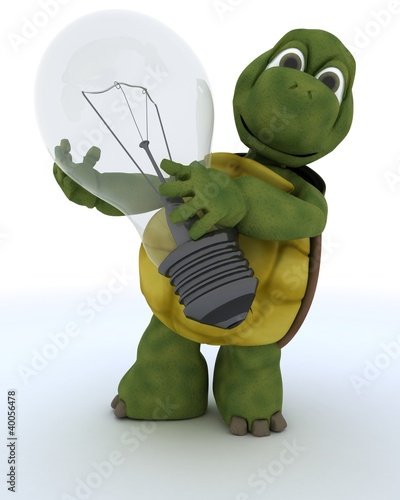 tortoise holding a light bulb