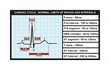 Cardiac cycle and normal levels of intervals and waves