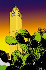 Cactus and minaret at sunset - Tunis - Tunisia