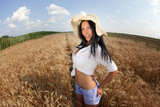 Cute sexy joyful woman in summer golden field