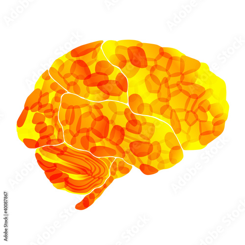 human brain, solar thoughts, vector abstract background