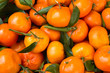 Clementines - a variety of mandarin orange