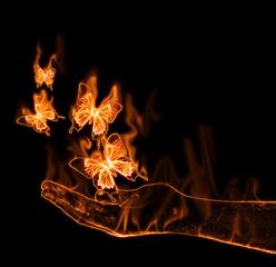Papillon en feu