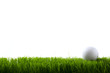 Golf ball on green grass - 40099407