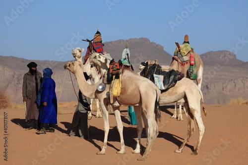 Tuinposter Kameel Karawane in der Sahara
