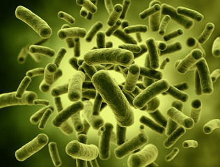 Bacteria high resolution 3d render