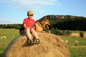 Teenage boy with dog on the meadow by sunset during holidays