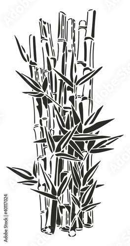 Fototapeten,bambu,pflanze,ausreisen,stiel