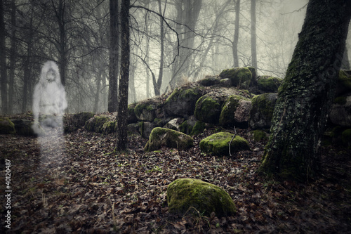 Fototapeta Ghost of a woman in the wood
