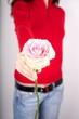 take pink rose