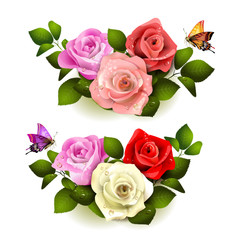 Roses with butterflies on white background