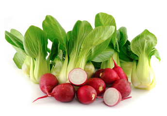 Bok choy (chinese cabbage) and radishes on white background