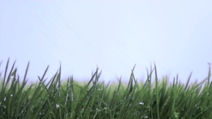 Rain falling in super slow motion on the grass