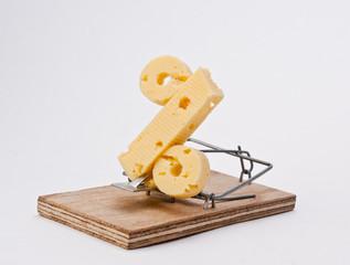 сыр в мышеловке