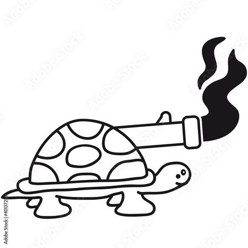 turtle_tank