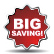 BIG SAVING! ICON