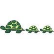 turtle_family