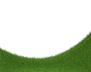 green grass frame, isolated on white background