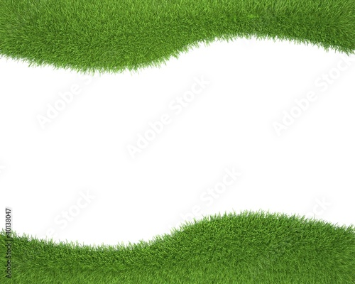 frame of spring grass isolated on white background