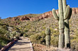 Path to Tonto National Monument