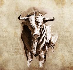 Sketch of tattoo art, spanish bull, dangerous bull with beaked h