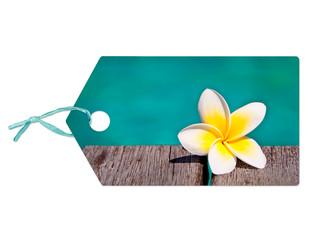 Etiquette fleur de frangipanier
