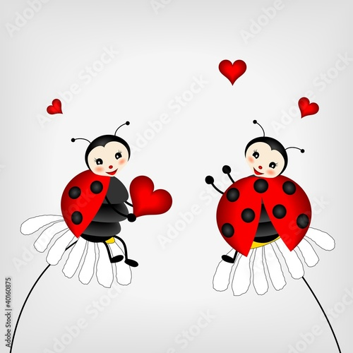 Foto op Canvas Lieveheersbeestjes two ladybirds