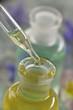 Amomathérapie - Huiles essentielles