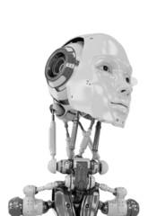Gentle robotic woman