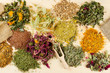 healing herbs on wooden table