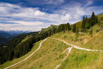 Brauneck Wanderweg Wanderung Gebirge Berg