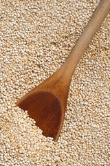Wooden spoon and quinoa grains