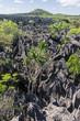 The Tsingy of Ankarana