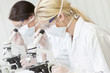Female Scientific Research Team Using Microscopes in Laboratory