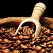 Coffee beans on burlap sack