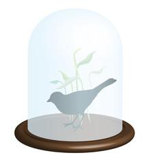 globe oiseau