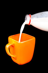 Mug and a bottle of milk