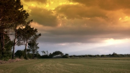 Grass field being watered with a stormy sky