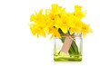 yellow daffodils in glass vase isolated on white