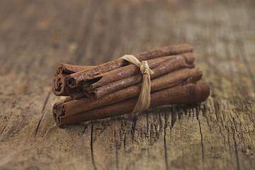 CANNELLE - Épice & plante médicinale