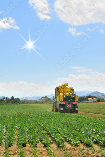 Agricultural machine for harvesting plant