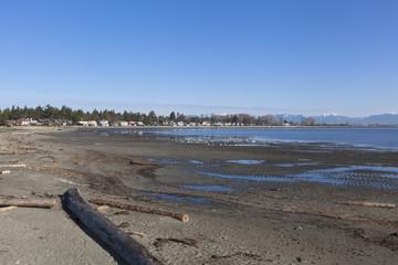 the beach at Boundary bay regional Park, Delta BC