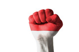 Fist painted in colors of indonesia flag