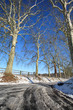 Route verglacé , hiver et soleil