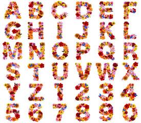 花で作った書体
