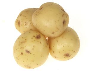 New Jersey Potatoes