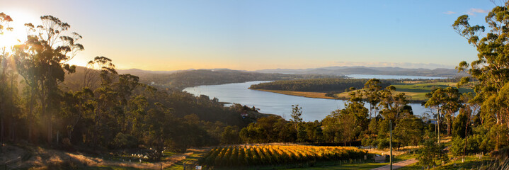 Winery panorama in Tamar Valley, Tasmania