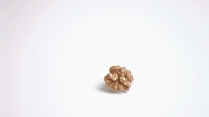 Walnut kernel falling in super slow motion